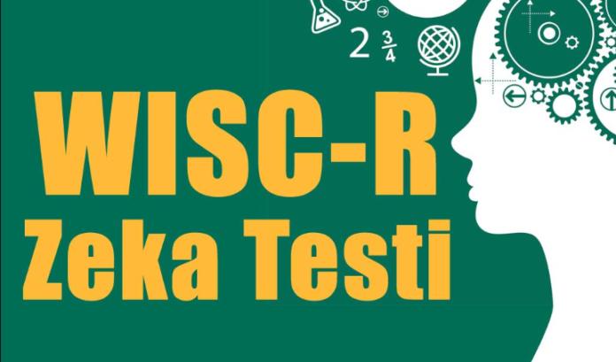 Wisc-r-Zeka-Testini-Kimler-Wisc-r-Nasil-Yapilir-Uygulayabilir-Wisc-r-Testi-Nedir
